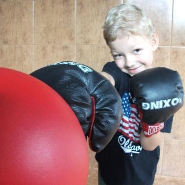 Boks -Trening personalny uroczego 6-letniego Hubercika_10